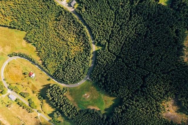 Zwycięzcą tego rankingu został jeden z najstarszych polskich parków narodowych. Karkonoski Park Narodowy rozciąga się na 5580 hektarach, obejmuje tereny zielone oraz piętra subalpejskiei alpejskie, a najwyższy szczyt Karkonoszy - Śnieżka, to gratka dla miłośników chodzenia po górach. Warto zobaczyć piękny 13 metrowy wodospad Szklarki, usytuowany pośrodku malowniczego bukowego lasu. Tu po prostu trzeba przyjechać.