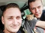Małe kocię utknęło w komorze silnika. Pomogli mieszkańcy i policjanci. Zobacz zdjęcia z akcji!