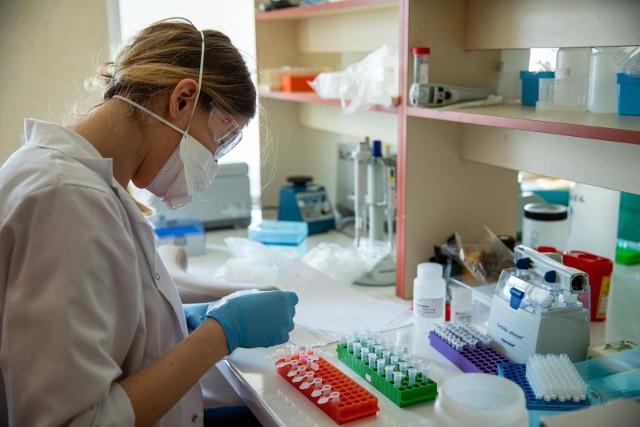 Laboratorium Akademickiego Ośrodka Diagnostyki Patomorfologicznej i Genetyczno-Molekularnej UMB bada mutacje koronawirusa.