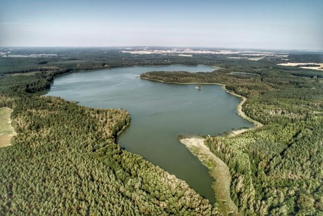 Wielkie należy do największych akwenów naszego regionu i leży wśród pokrytych lasami pagórków morenowych, w rozległej rynnie polodowcowej. Jego powierzchnia wynosi 209 ha, głębokość maksymalna 22 metry. Jezioro ma ciekawą, urozmaiconą linię brzegową.... Mamy okazję dokładnie je obejrzeć dzięki pięknym zdjęciom Grzegorza Walkowskiego. Przejdź do GALERII>>Zobacz też: Jezioro Głębokie koło Międzyrzecza - kąpielisko z lotu ptaka