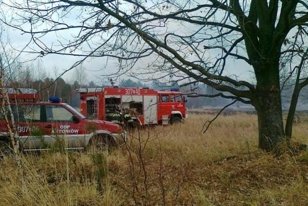 Ogień objął 4 ha łąk.