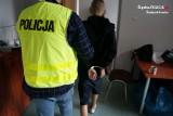17-latek wyrzucił psa przez okno w Świętochłowicach. Wcześniej ukradł telefon i uciekł z ośrodka wychowawczego