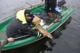 Na jeziorze Wierzchowo taaakie ryby na Memoriale Karola Zacharczyka [zdjęcia]