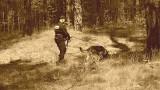 Policyjny pies wytropił złodziei. Jason z komendy w Ostrowi Mazowieckiej pomógł policjantom z Makowa