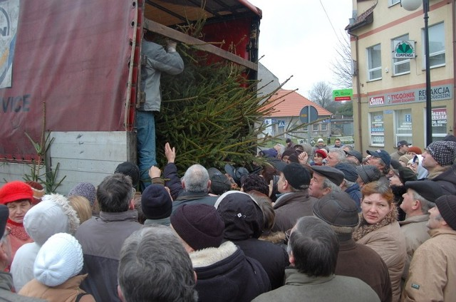 Przy ciężarówce, z której rozdawaliśmy świerki były w piątek prawdziwe tłumy.