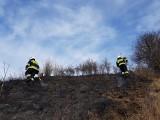 Powiat krakowski. Sezon na wypalanie traw już się zaczął. Strażacy jeżdżą, gaszą, tracą czas i energię