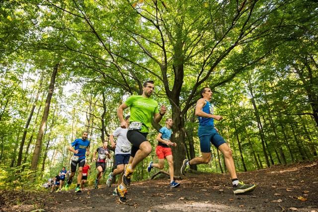 City Trail to biegi przełajowe w największych miastach w Polsce
