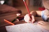 SULECHÓW. Gdzie można znaleźć interesujące zajęcia dla dzieci i młodzieży?
