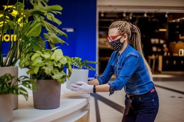 Kwiaty i rośliny zielone stanowią piękny element aranżacji punktu informacyjnego w Porcie Łódź.