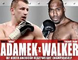 Tomasz Adamek - Travis Walker. Transmisja online boks linki w internecie PPV pay-per view (wideo)