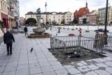Na Starym Rynku w Bydgoszczy jednak będą drzewa