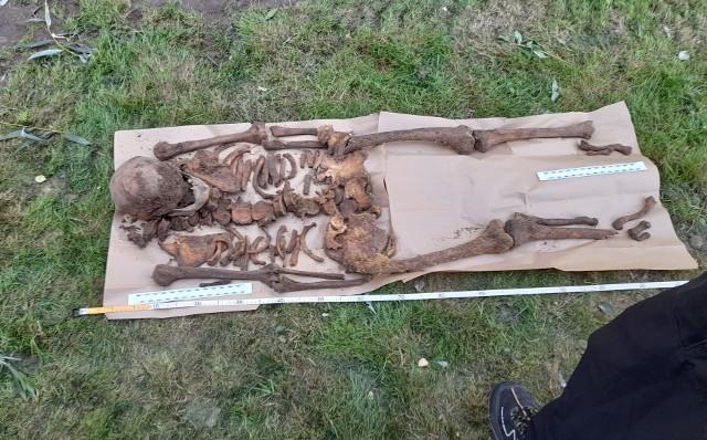 Zmarły był pochowany raptem 60 centymetrów pod trawnikiem.