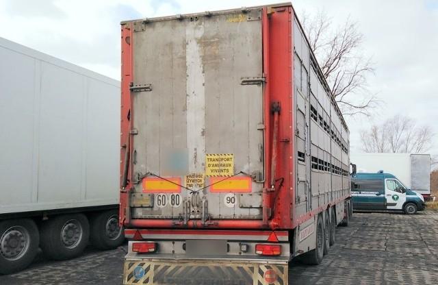 Inspektorzy Transportu Drogowego w ostatnich dniach zatrzymali do kontroli różne pojazdy. Jeden z nich nie miał tachografu, zaś inny miał przekręcony licznik