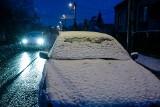 Nagły atak zimy w Krakowie. Po wichurach zaczął sypać śnieg [ZDJĘCIA]