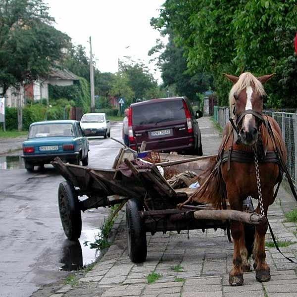 Ul. Kościuszki w Nisku. Ludzie boją się tu jeździć nawet furmankami. Zawsze bezpieczniej po chodniku.