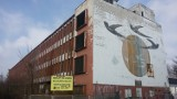 Dramatyczny wypadek w Sosnowcu. Chłopiec spadł z 20 metrów z budynku Wandy. Walczy o życie podłączony do respiratora