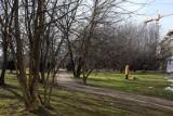 Poznań: Miasto szuka terenów pod park na Naramowicach