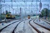 Polskie porty i Małaszewicze są kluczowe dla przewozów intermodalnych Nowym Jedwabnym Szlakiem