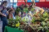 """Kraków. """"Miejska dżungla"""", czyli niezwykłe targi roślin egzotycznych [ZDJĘCIA]"""