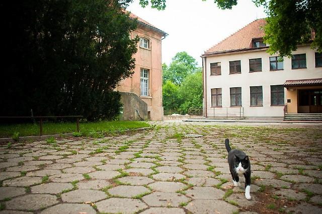 Była szkoła (z prawej) jest położona tuż obok zabytkowego pałacyku z XVIII wieku (z lewej) i chronionego prawem parku, zabytków klasy A