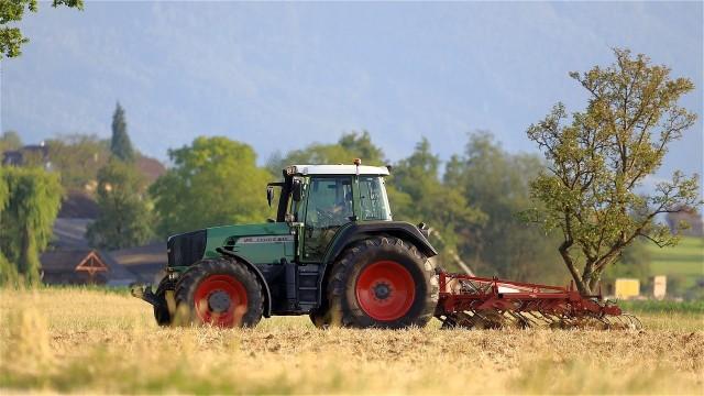 Rolnicy w rozmowach wskazują, że najlepszym rozwiązaniem byłyby naturalne nawozy, ale ich brakuje.