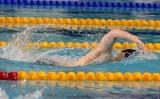 Pływanie. Udane starty zawodników KU AZS Politechniki łódzkiej