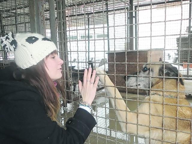 - Podaj staruszkom pomocną dłoń! - apeluje Aleksandra Niewiadowska z Inicjatywy Dla Zwierząt