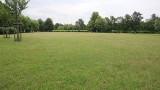 Skoszono tzw. łąki samoistne w parku Czarneckiego. Poznaniacy oburzeni