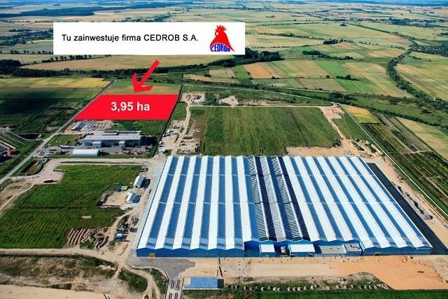 Cedrob wchodzi do Kluczborka. Podstrefa ekonomiczna jest pełnaCedrob SA to istniejąca od 1991 roku firma zajmująca się produkcją mięsną i przetworami drobiowymi. Spółka szczyci się tym, że jest największą firmą w branży z polskim kapitałem.