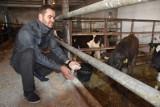 Mateusz Stachowiak produkuje pasze z własnej soi dla bydła [zdjęcia]