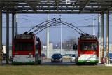 Po decyzji premiera ZTM Lublin odwołuje kursowanie specjalnych linii, które miały dowozić mieszkańców na groby bliskich