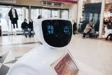 Roboty pozbawią nas pracy? W tych branżach pracownicy boją się o swój etat. Czy rzeczywiście mamy powody do niepokoju?