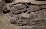Pszczyna. Odkryto średniowieczny cmentarz! Bezcenne odkrycie archeologiczne pod kościołem Wszystkich Świętych. Zobaczcie zdjęcia
