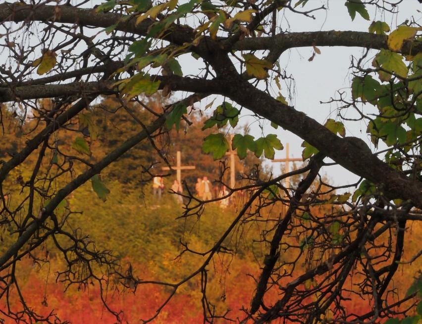 Jesień w Kazimierzu Dolnym. W tych krajobrazach można się zakochać! Zobacz zdjęcia ze spaceru po tym urokliwym mieście