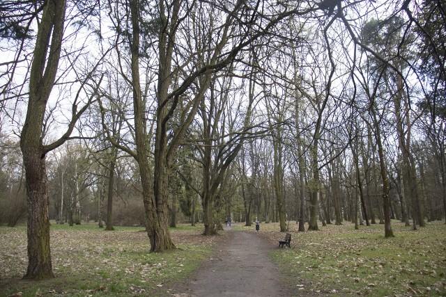 Szukasz idealnego miejsca do wypoczynku na łonie natury? We Wrocławiu mamy całkiem sporo terenów zielonych. Oto najpiękniejsze parki we Wrocławiu. Kliknij pierwsze zdjęcie i kieruj się strzałkami, by przeglądać galerię.