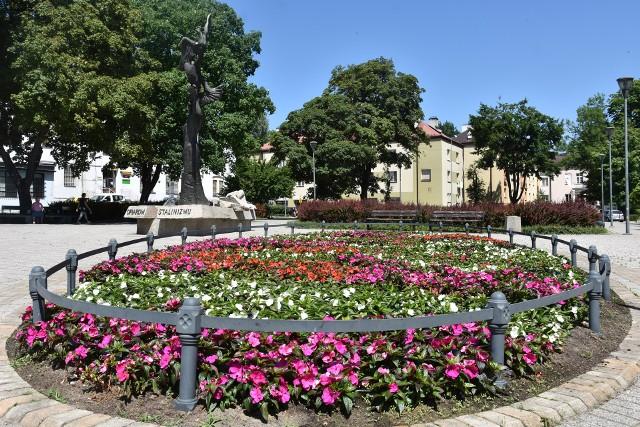 Miasto sadzi kwiaty. Są wśród nich m.in. różne rodzaje begonii, pacioreczniki, pelargonie, goździki, niecierpki. Na jesieni na skwerach pojawią się też bratki