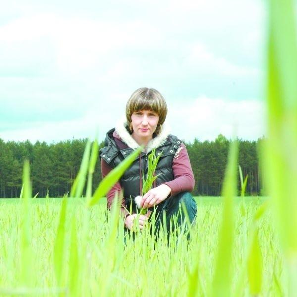 Maja Bardadin, właścicielka gospodarstwa w Ploskach uważa, że ekologia ma przyszłość. Jej ekologiczne zboża: żyto, owies, gryka i łubin zajmują aż 154 hektarów.