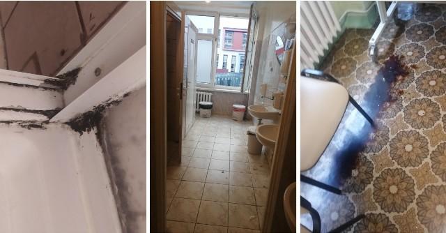 W takich warunkach przebywają pacjentki oddziału patologii ciąży II w Wojewódzkim Szpitalu Zespolonym w Toruniu