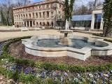 Park i pałac w Zatoniu zgarnęły nagrodę. Wyróżnienia dla Kostrzyna, Lasek, Rudna, Brodów