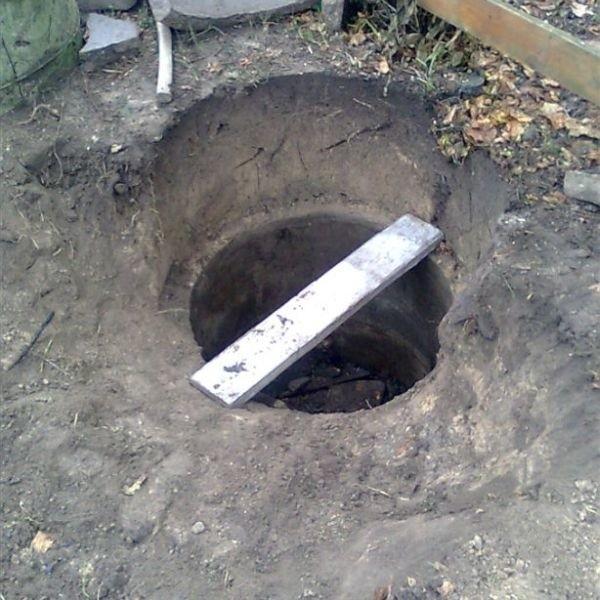 Pomimo wydobycia klaczy ze studni, nie przezyla ona wypadku