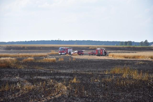 Pożar zboża w Sulinowie koło Żnina.