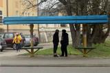 Radzyń Podlaski w pandemicznej odsłonie. Zobacz zdjęcia ze spaceru po mieście