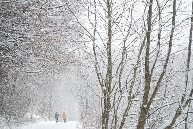 W Dolinie Będkowskiej w końcu zagościła zima