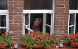 Domowe sposoby na mycie okien, jakie będą skuteczne?