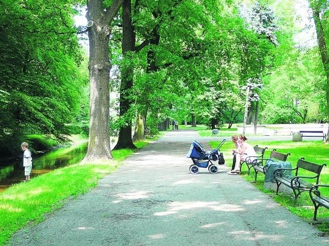 Położony w centrum Pabianic park Słowackiego powinien być wizytówką miasta.