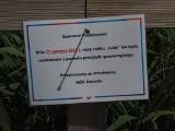 Pasażerowie MZK Koszalin o tym, że Julek nie kursuje, dowiedzieli się na przystani