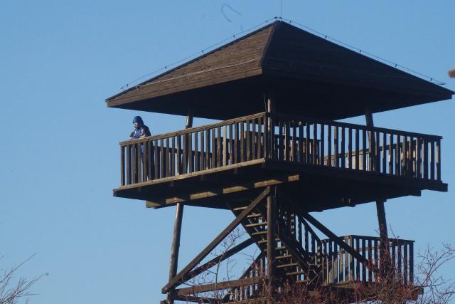 Drewniana wieża na Koziej Górze. Znajduje się przy Sanktuarium św. Józefa w Prudniku – Lesie (miejscu internowania kardynała prymasa Stefana Wyszyńskiego w latach 1954 – 55). Z zadaszonego tarasu widokowego roztaczają się widoki na Prudnik i okolice. Przy dobrej pogodzie widoczna jest Góra Św. Anny. Wieża została zbudowana w 2009 r. na dawnym poligonie wojskowym,