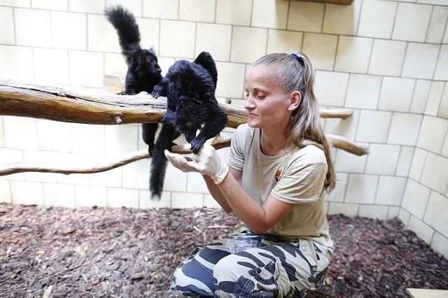 Darii bardzo zależy na pracy w opolskim zoo. Utrzymanie się na tej posadzie pozwoliłoby jej pogodzić pracę z opieką nad dziećmi i zapewnić rodzinie stały dochód.