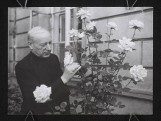120 lat temu urodził się Stefan Wyszyński. Prymas Tysiąclecia był także żołnierzem i sanitariuszem. Walczył w Powstaniu Warszawskim