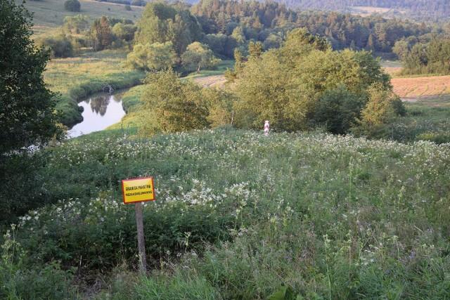 """Mniej oblegane, ale atrakcyjne miejsca w Bieszczadach. W sam raz na krótki wyjazd. Nz. """"zielona"""" polsko-ukraińska granica, tuż przy drodze z Tarnawy Wyżnej do Lutowisk."""